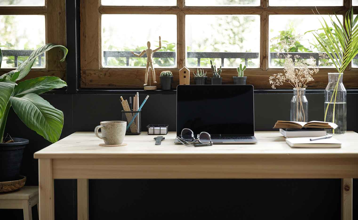 Home Office Plants can help improve your productivity